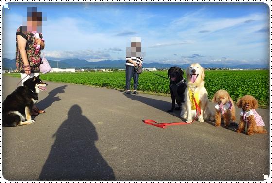 2015,7,13お散歩11