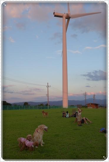2015,7,20公園1