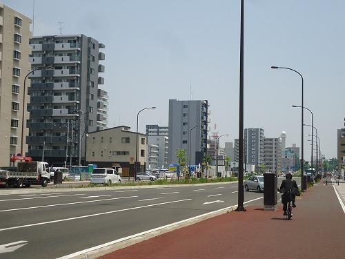 1506sinobuhiyasi001.jpg