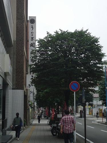 1507kaiseian001.jpg