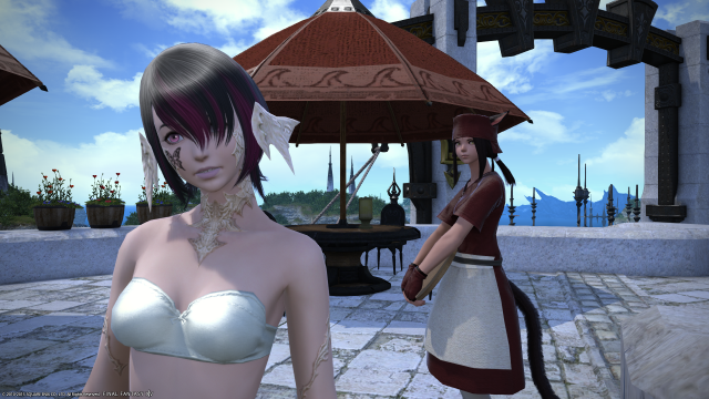 s_ffxiv_20150628_235206.png
