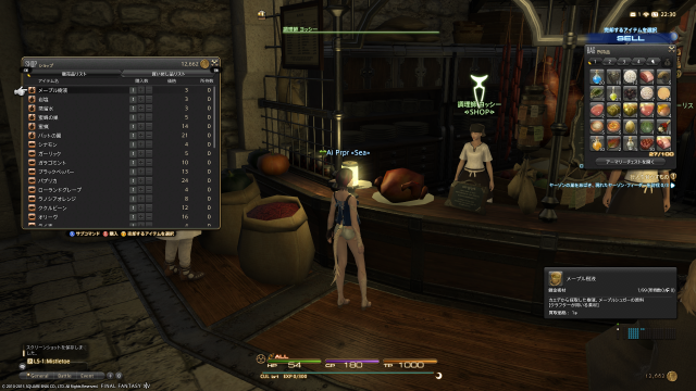 s_ffxiv_20150630_223058.png