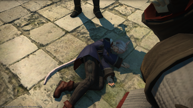 s_ffxiv_20150702_011057.png