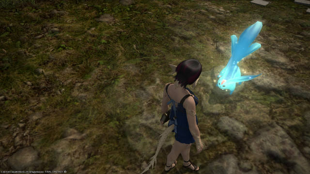 s_ffxiv_20150702_223850.png