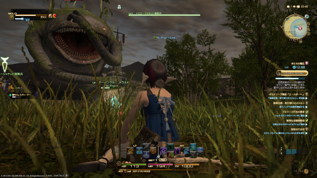 s_ffxiv_20150702_224048.png