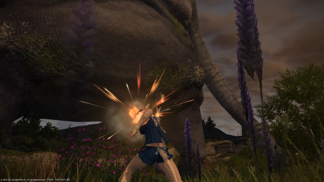 s_ffxiv_20150702_224216.png