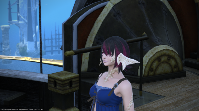 s_ffxiv_20150704_234103.png