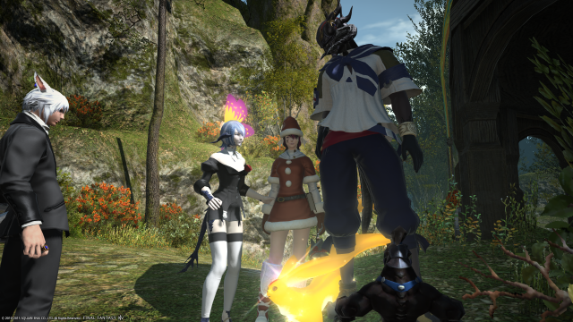 s_ffxiv_20150705_004613.png