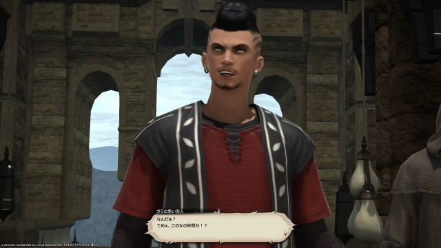 s_ffxiv_20150707_002444.png