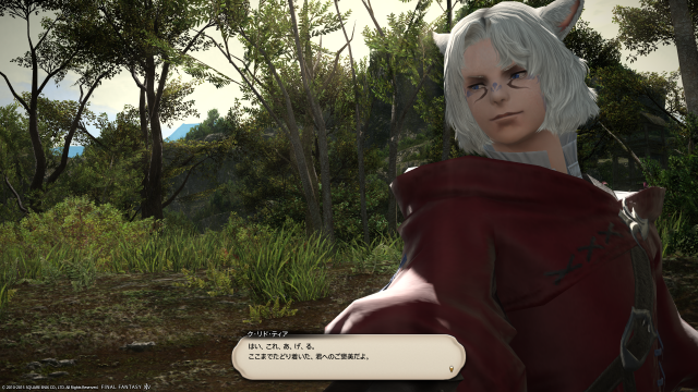 s_ffxiv_20150715_135752.png