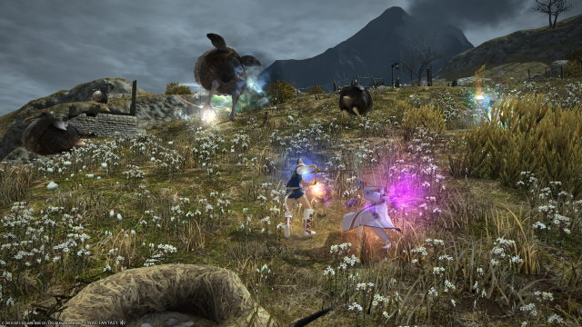 s_ffxiv_20150717_003045.png