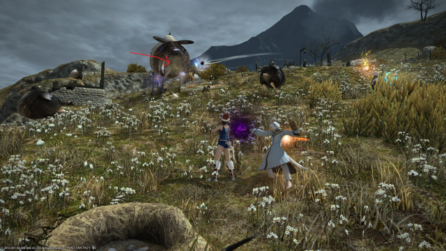s_ffxiv_20150717_003046.png