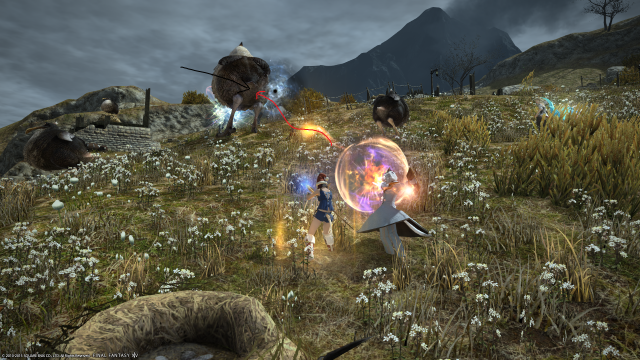 s_ffxiv_20150717_003049.png