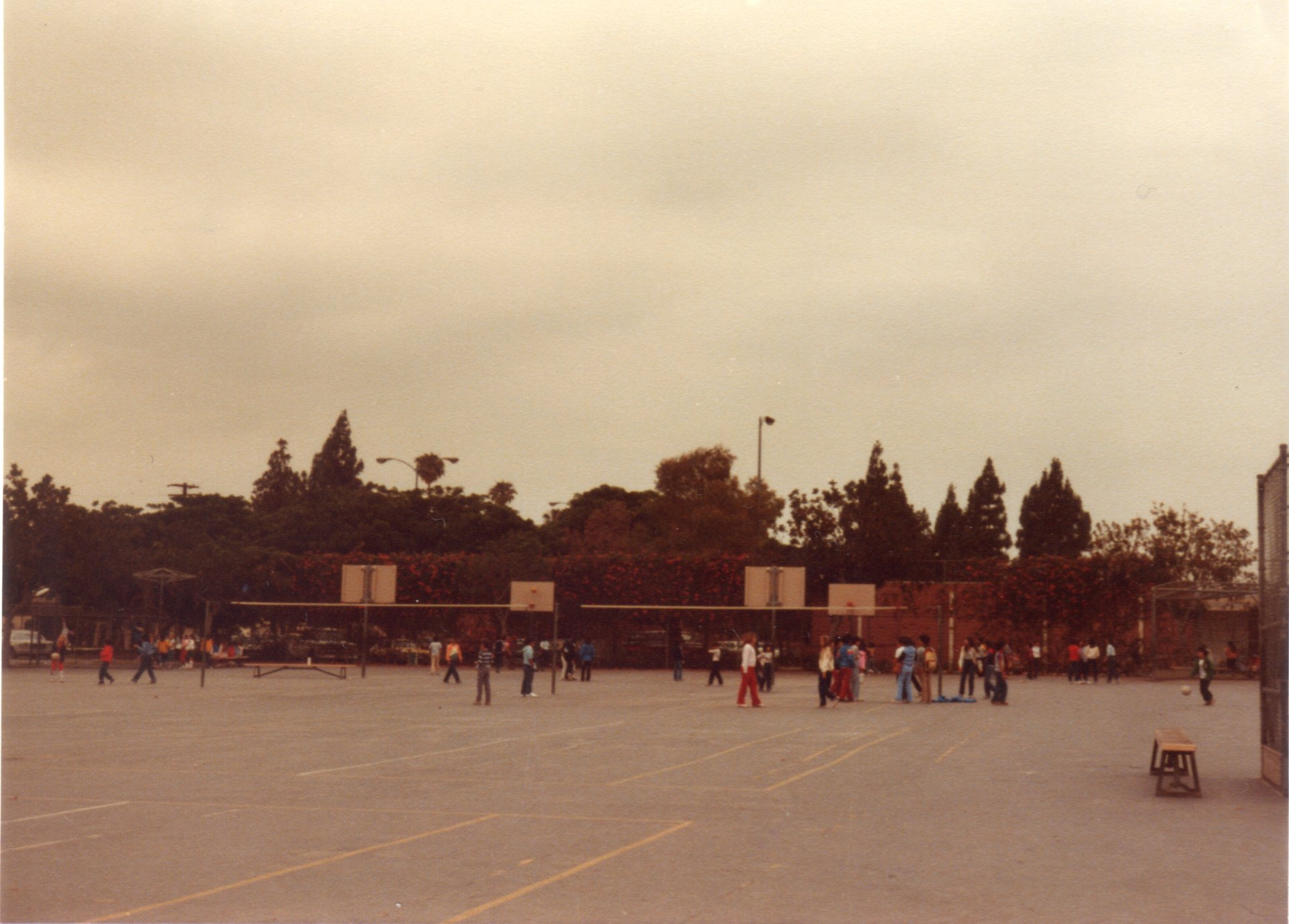 ロスアンゼルス小学校2 511