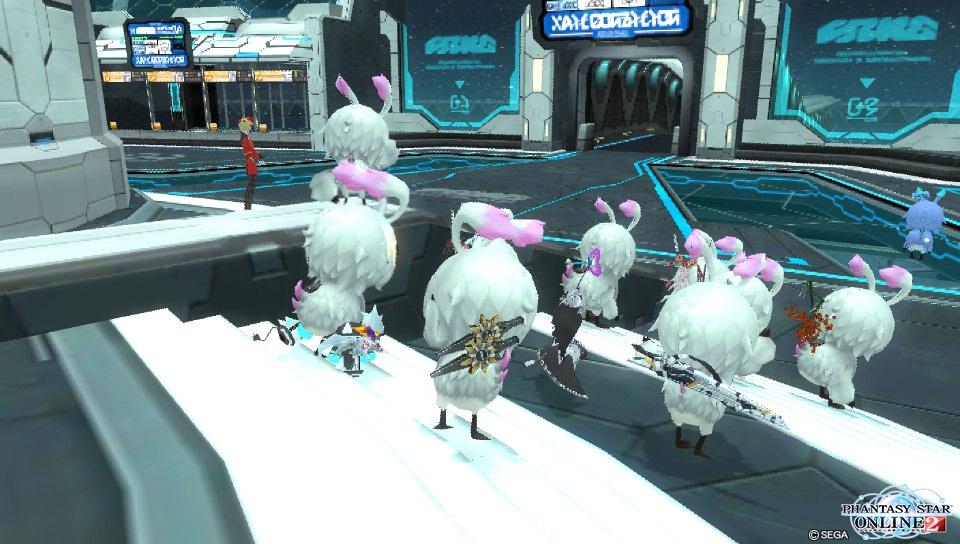 鳥の祭典2