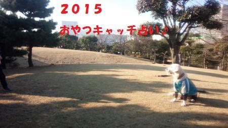 20150101-1[1]_convert_20150105165403