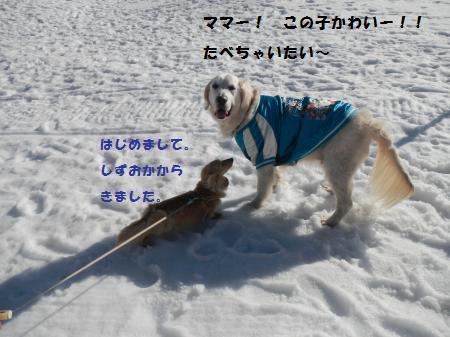 20150328-13_convert_20150416121151.jpg