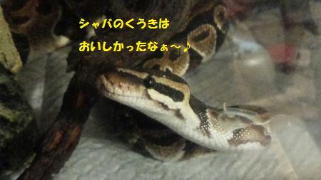 20150526-2[1]_convert_20150527120211