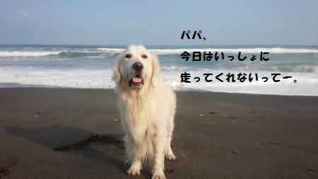 20150712-6[1]_convert_20150716111308