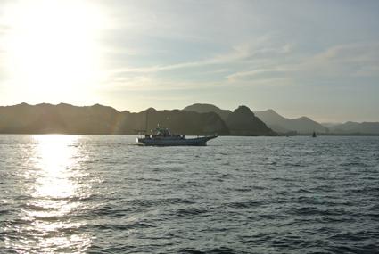 maruikakatuyama.jpg