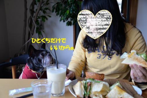 DSC_0927_convert_20150127220746ペイント