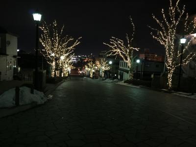 函館旅行・元町公園