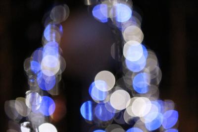 ライト(かぜっぷさん)