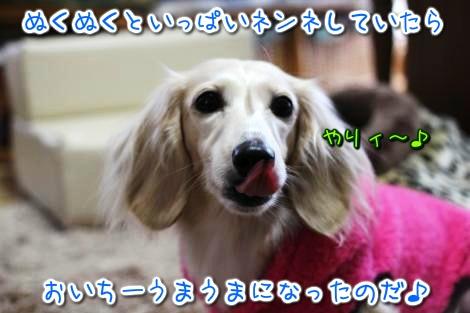 20150107145039.jpg