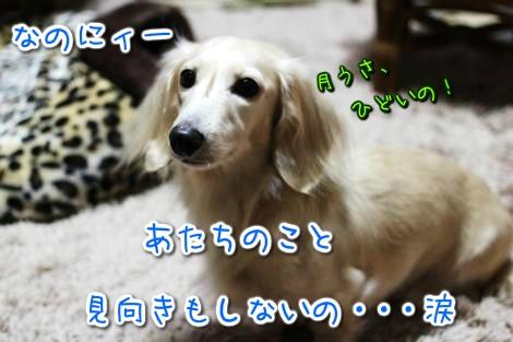 20150125041910.jpg