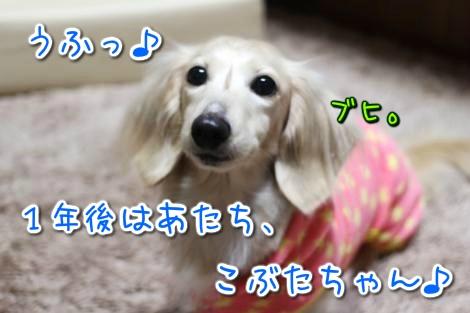 20150302025648.jpg
