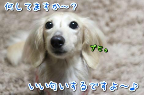 20150303034359.jpg