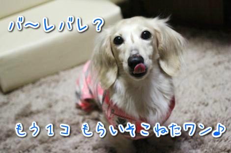 20150312024952.jpg