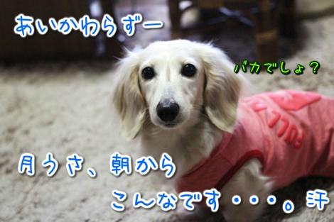 20150315091044.jpg