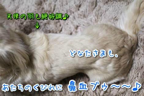 20150317032731.jpg