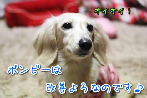 20150318183649.jpg