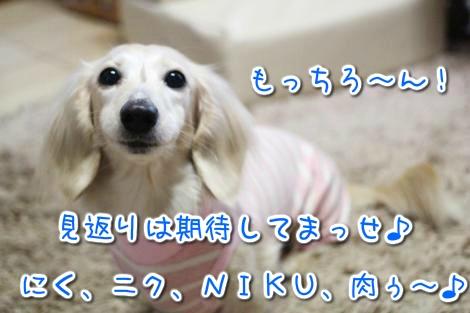 20150319102225.jpg