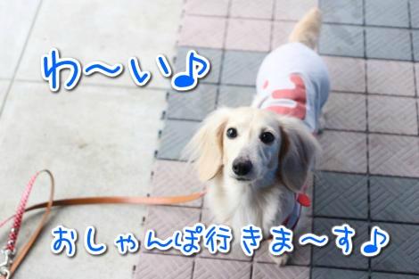20150320165026.jpg