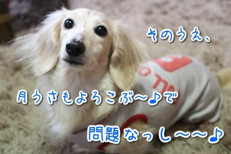 20150320170431.jpg
