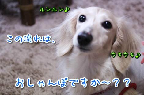 20150320171229.jpg
