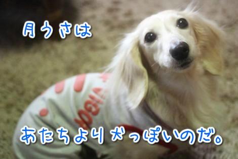 20150321101429.jpg