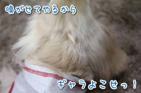 20150321101628.jpg