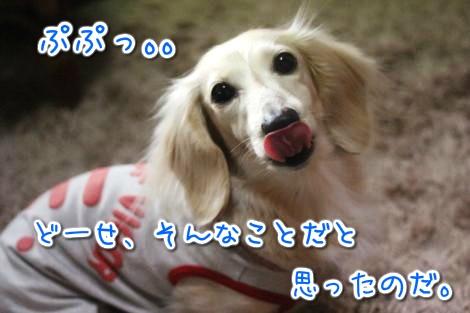 20150321102308.jpg