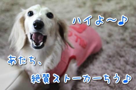 20150322100759.jpg