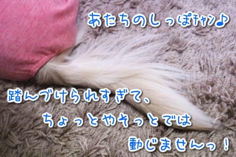 20150322101414.jpg