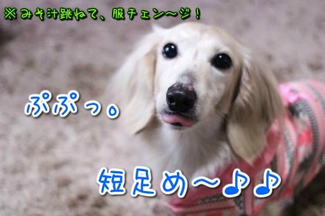 20150322103511.jpg