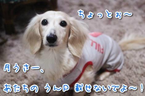20150324061323.jpg