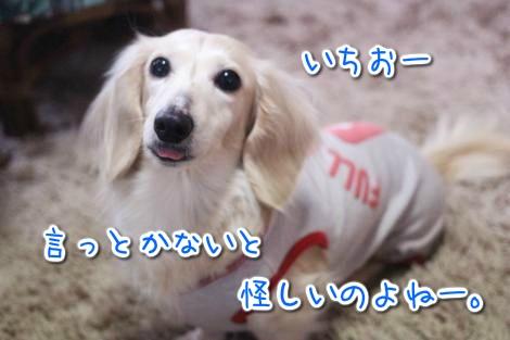 20150324061521.jpg