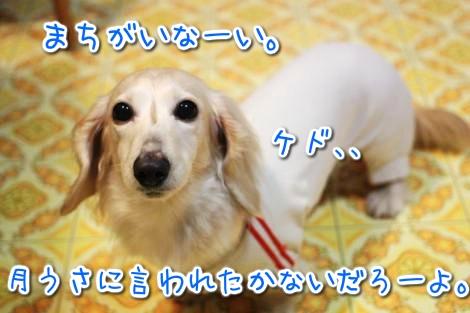 20150325194055.jpg