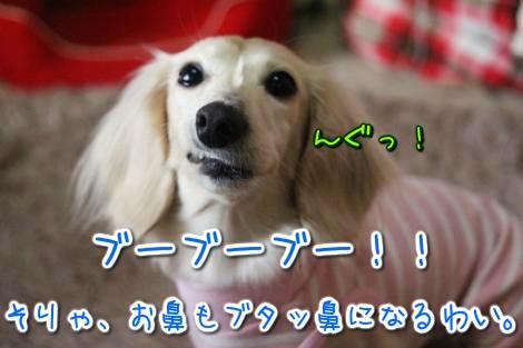 20150326095223.jpg