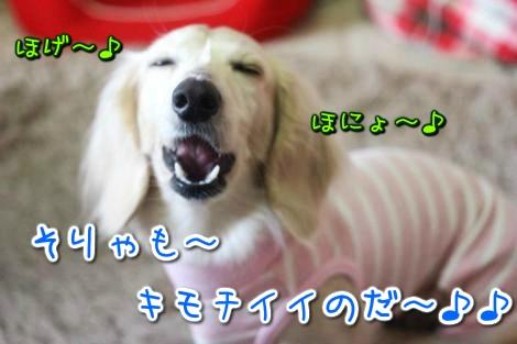 20150326095707.jpg
